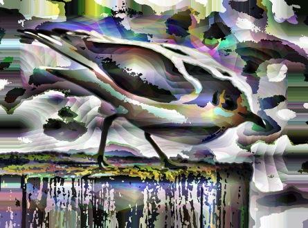 1bird crystal