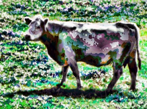 1brown cow