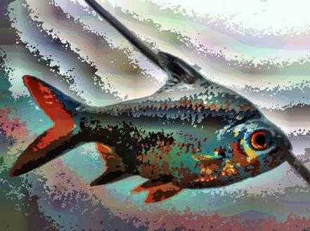 fish39