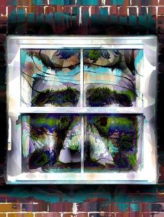 windowface1