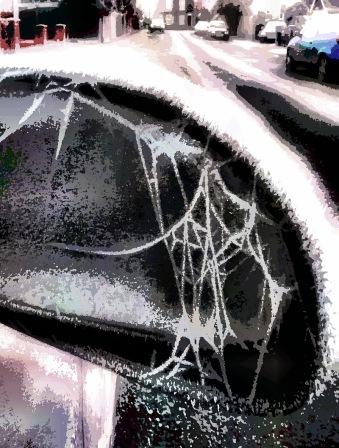 winterweb