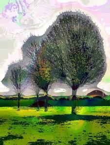 3-trees3