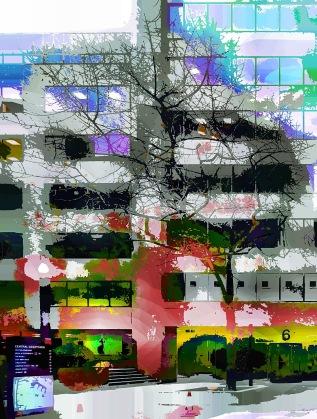 city-tree