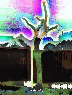 garden-tree2