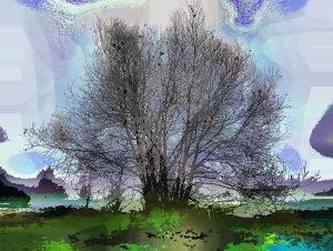 rainbow-tree1