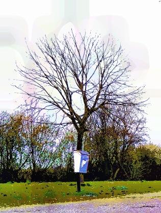 tree-fashion2