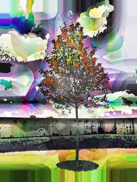 fence-tree