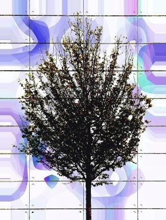 retro-tree