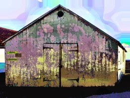 shed-decay (7)