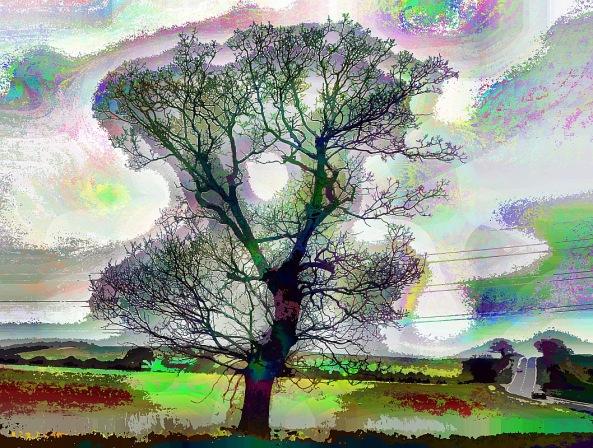side-tree (1)