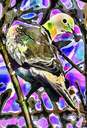 camoflaguebird