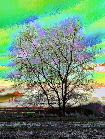fruit-tree
