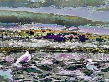 purple-patch