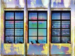 window-cleaners (2)