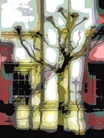 yellow-tree