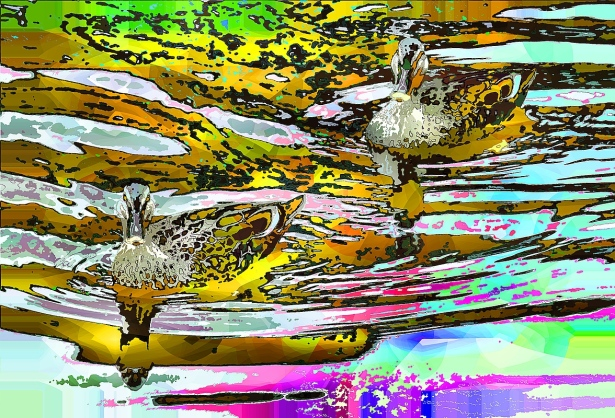 ripples (1)