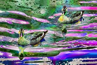 ripples (2)