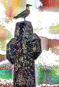 bird-on-a-cross (1)