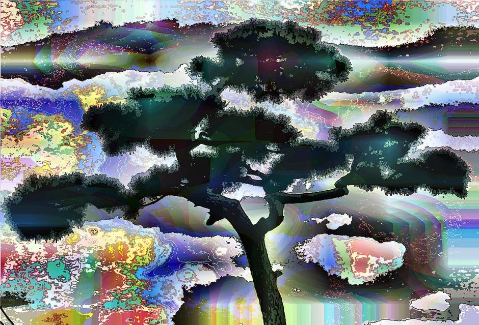 top-tree