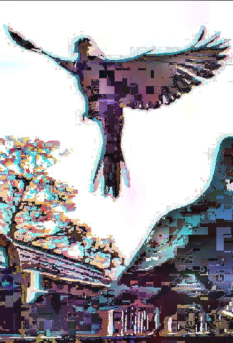 birdie (13)