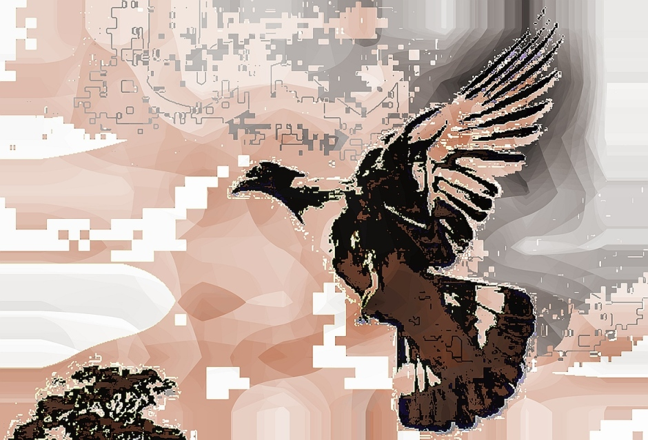 birdie (18)