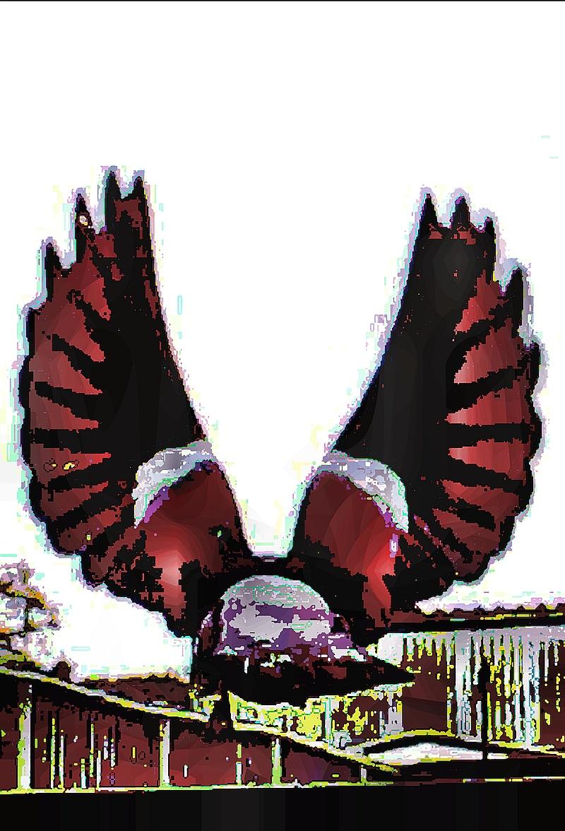 birdie (19)