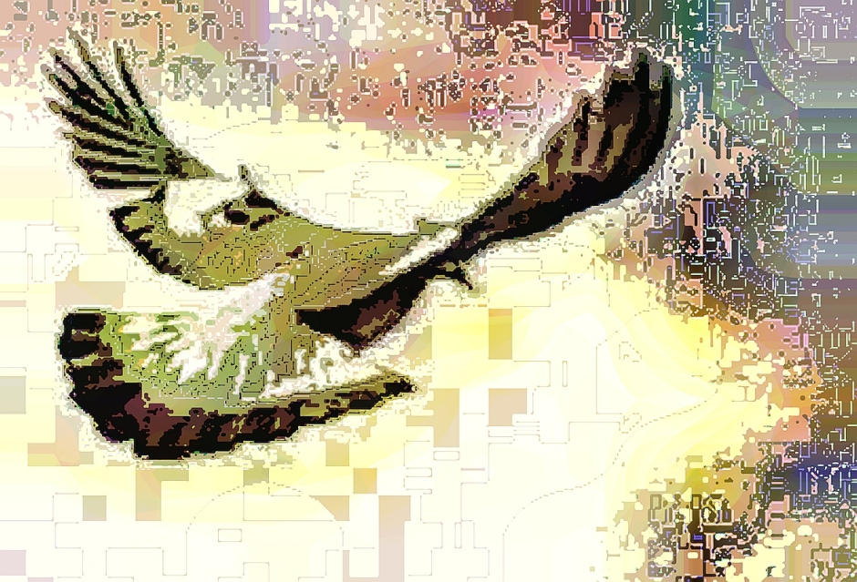 birdie (2)