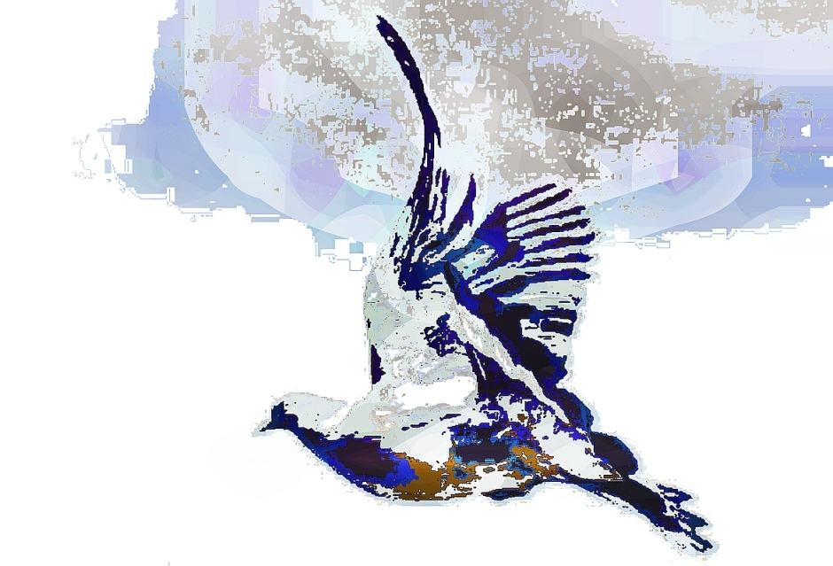 birdie (21)