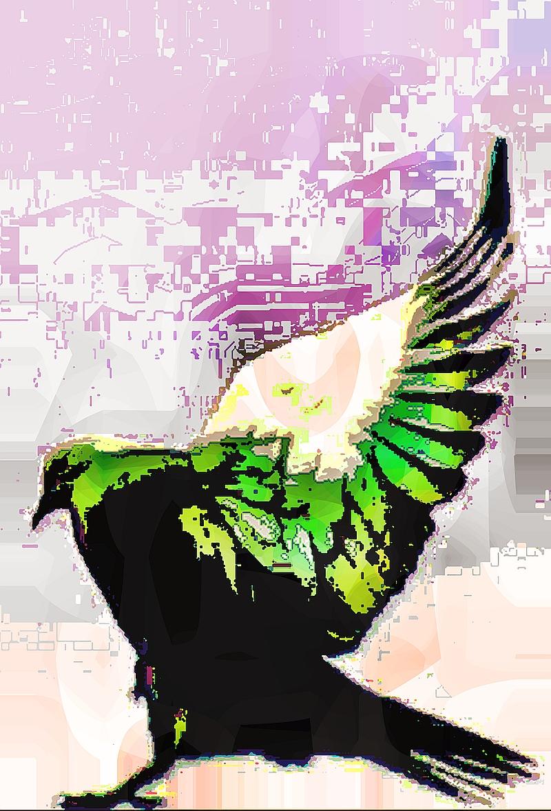 birdie (22)