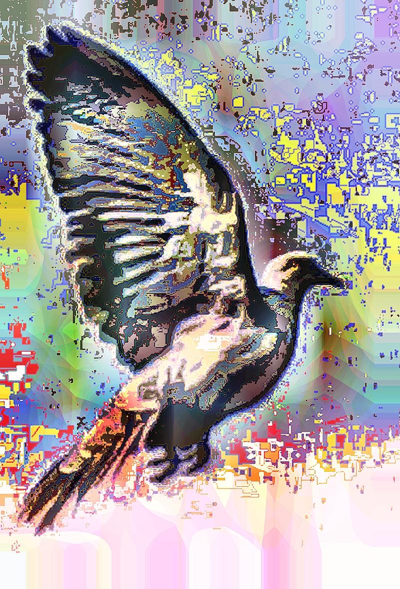 birdie (26)