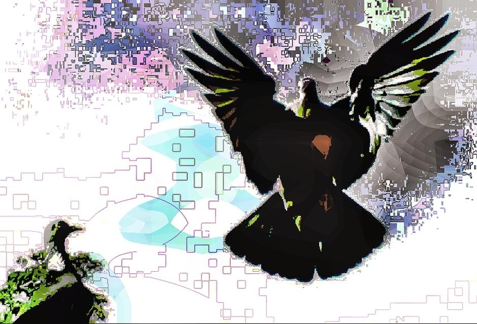 birdie (27)