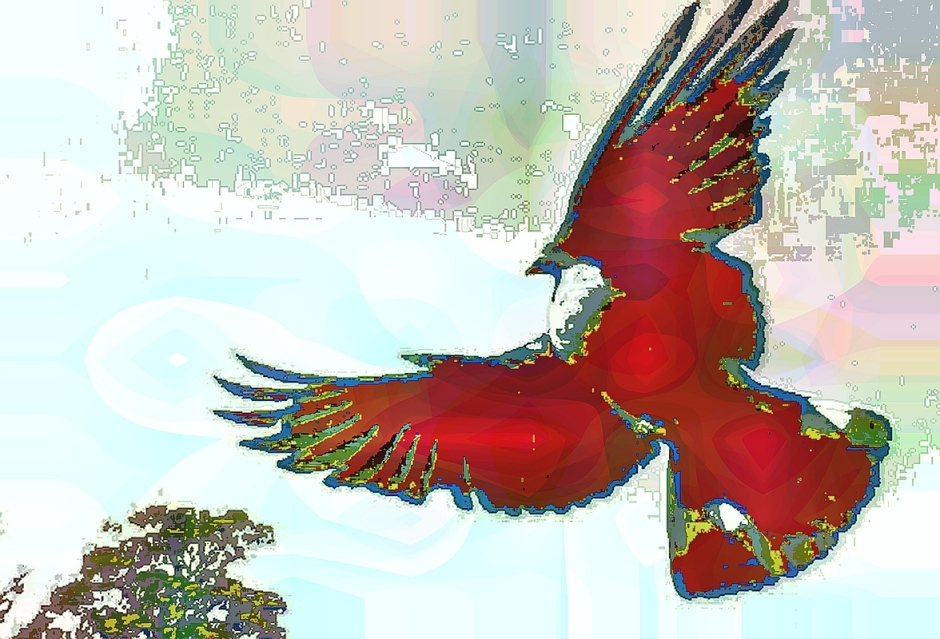 birdie (3)