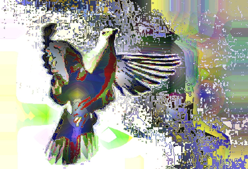 birdie (31)