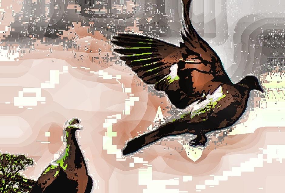 birdie (4)