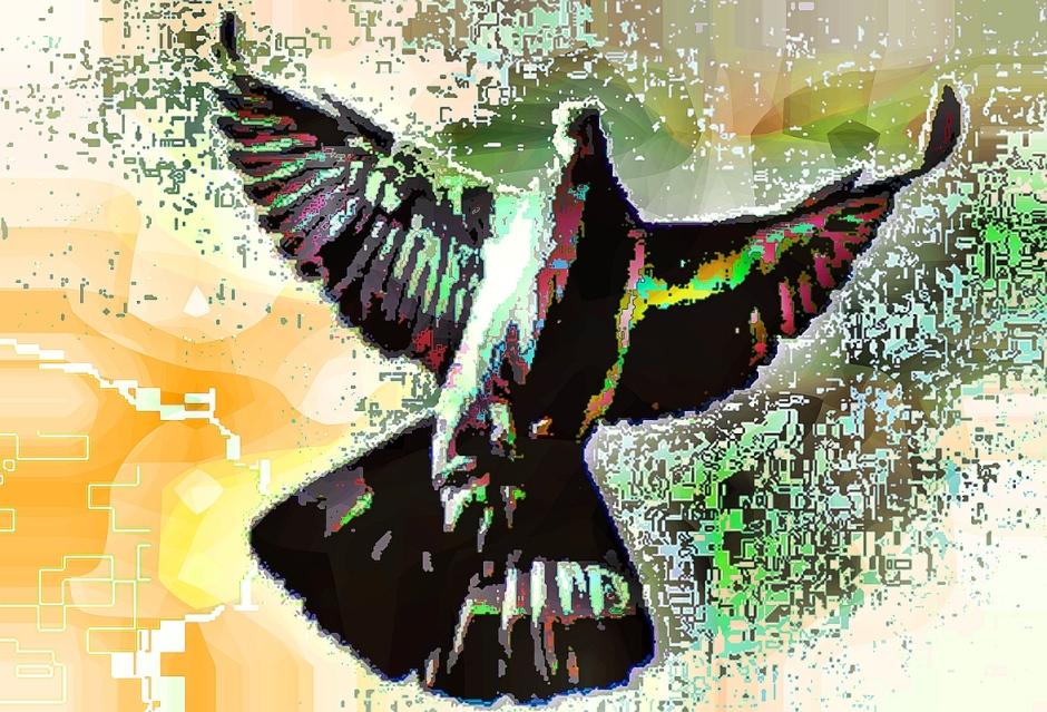 birdie (6)