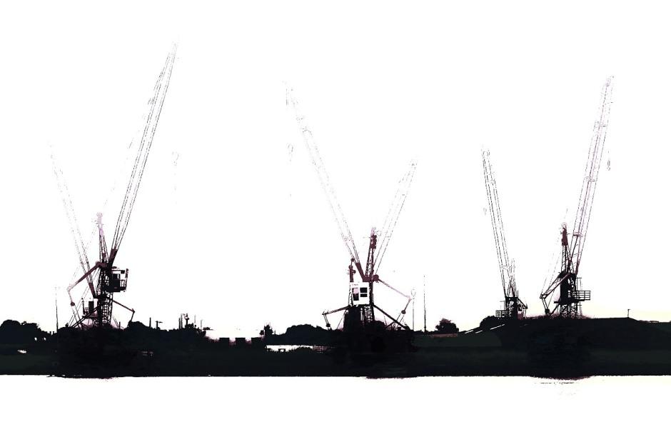 cranesinthemist