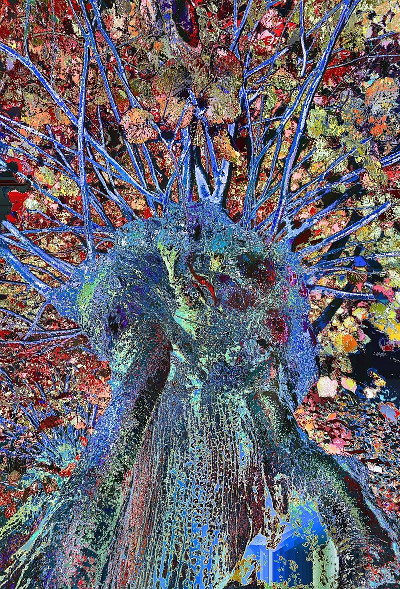 tree-creature